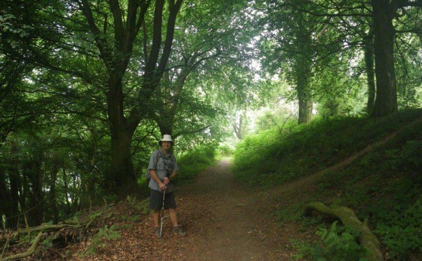 Clytha and Coed y Bwnydd walk in Wales