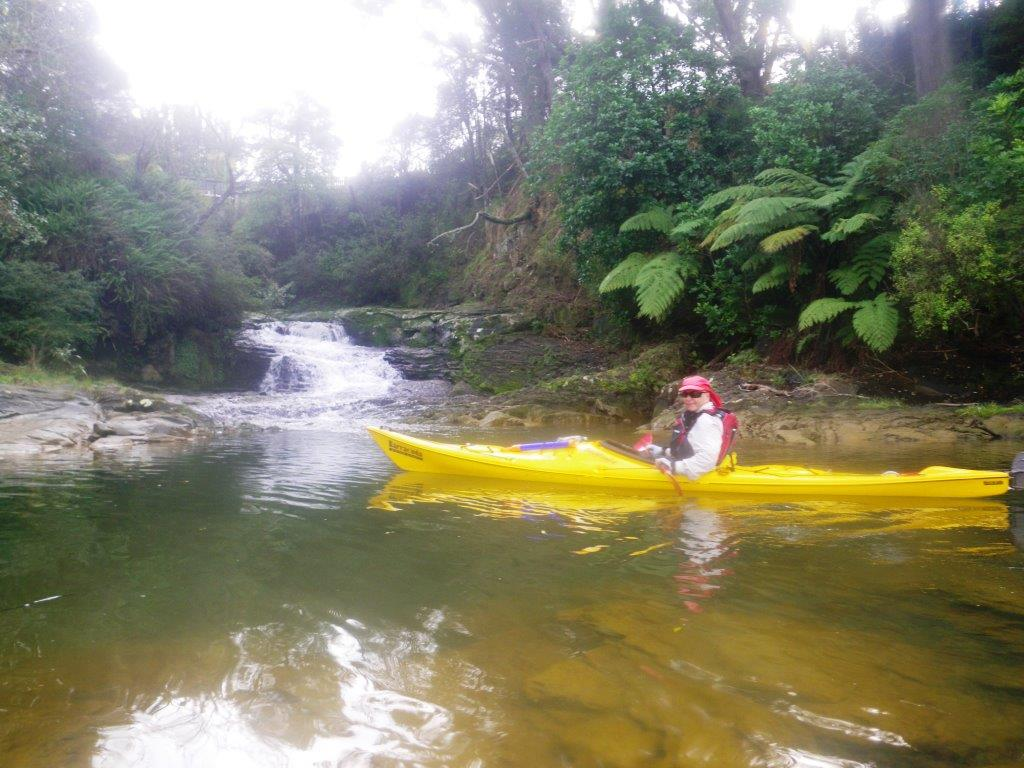 Matakana by kayak