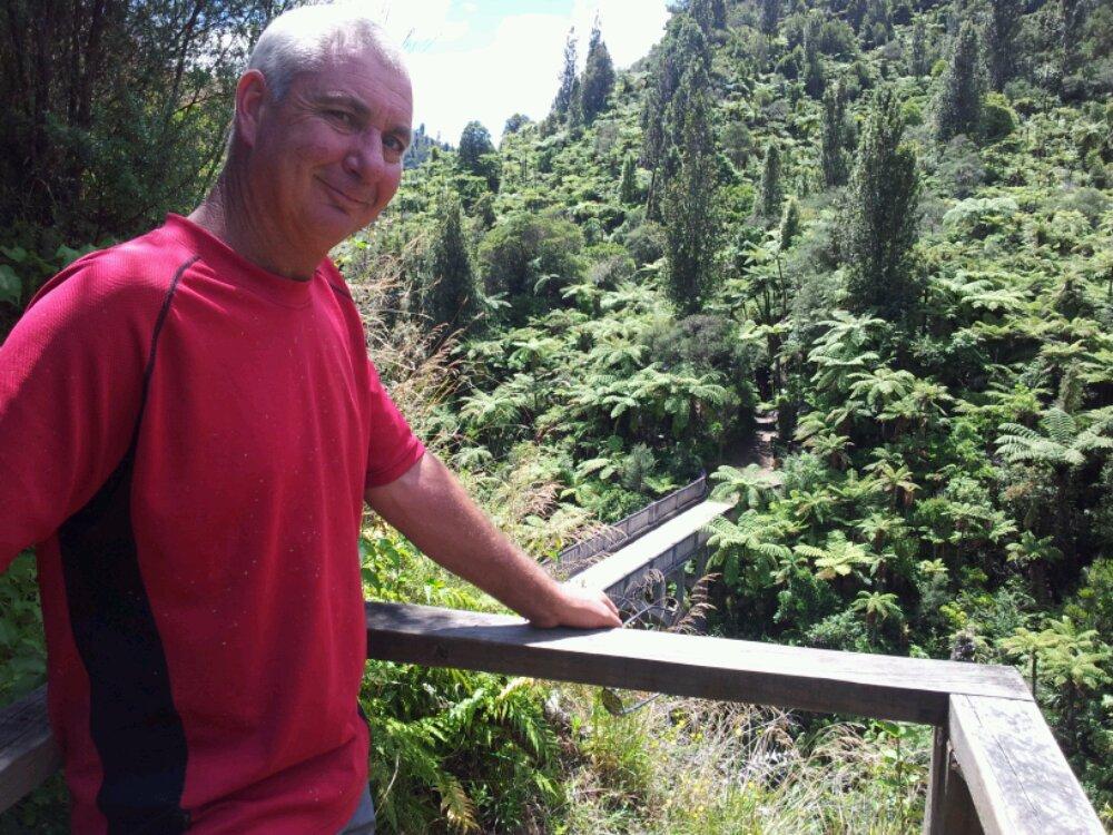 Mangapurua Trail to Bridge to Nowhere