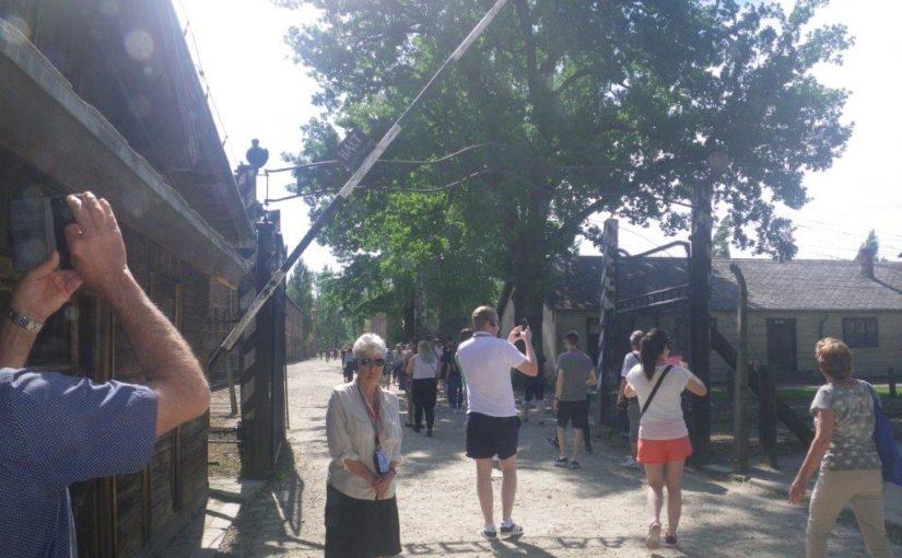 Auschwitz-Birkenau and Wieliczka Salt Mine