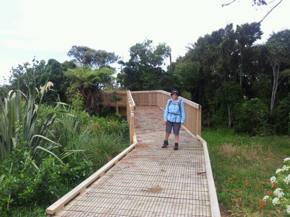 Lower Puhinui Creek walkway